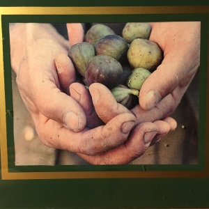 holding-figs